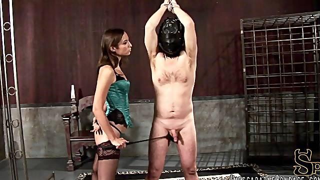 Brunette Mistress ties up her slave before applying ball busting