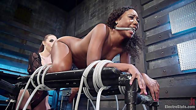 Chanel Preston and Chanell Heart love playing with BDSM torure