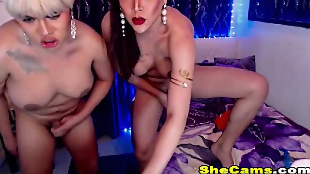Two Gorgeous Shemale Loves Anal Fucking
