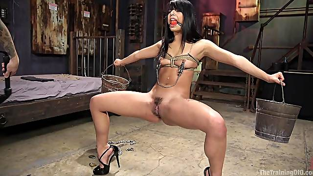 Horny Gina Valentina spreads her legs for a cock while she screams
